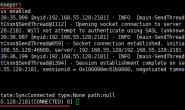 ZooKeeper常用指令及客户端连接相关操作